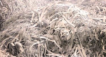 Pile of shredded paper.